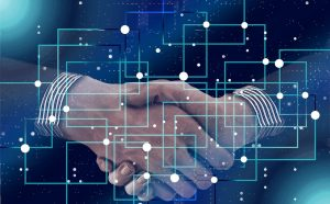 IBM blockchain consulting